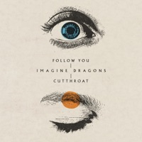 Follow You by Imagine Dragons MP3 Download