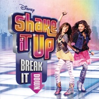Shake It Up mp3 download