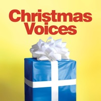 I Don't Wanna Spend One More Christmas Without You mp3 download