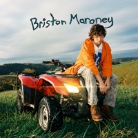 Download Sunflower by Briston Maroney