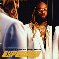 Expensive (feat. Nicki Minaj) by Ty Dolla $ign MP3 Download