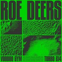 Download Voodoo Gym - EP - Roe Deers