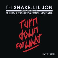 Turn Down for What (Remix) [feat. Juicy J, 2 Chainz & French Montana] mp3 download