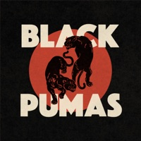 Colors - Black Pumas MP3 Download