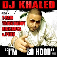I'm So Hood (feat. T-Pain, Trick Daddy, Rick Ross & Plies) mp3 download