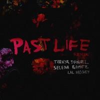 Past Life (Remix) mp3 download