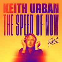 One Too Many by Keith Urban & P!nk MP3 Download