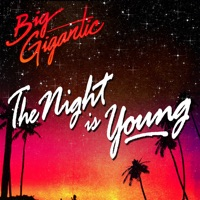 The Night Is Young (feat. Cherub) mp3 download