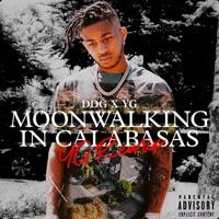 Moonwalking in Calabasas (YG Remix) - Single album download