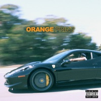 Download Orange Print by Larry June