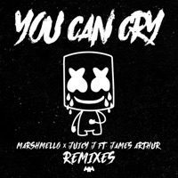 You Can Cry (Remixes) - Single album download