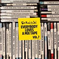 Download Everybody Loves A Mixtape, Vol. 7: Pride of Brighton (DJ Mix) - Fatboy Slim