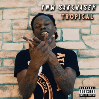 Tropical - Single by YNW SakChaser album download