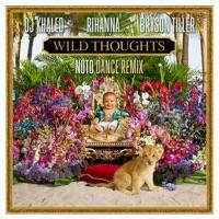 Wild Thoughts (feat. Rihanna & Bryson Tiller) [NOTD Dance Remix] - Single album download