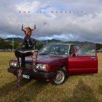 Pop It, Shake It (feat. DJ Mustard) - Single album download