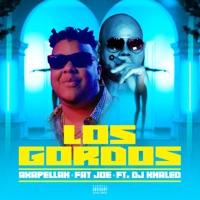Los Gordos (feat. DJ Khaled) - Single album download