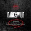 Dark & Wild album cover