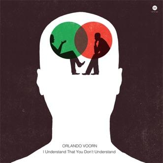I Understand That You Don't Understand by Orlando Voorn album download