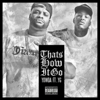 That's How It Go (feat. YG) - Single album download