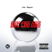Not the One (feat. Brandy) - Single album download
