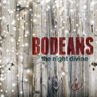 The Night Divine album download